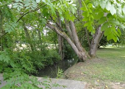 la rivière L'Anguilleuse