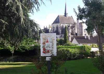 pontlevoy-image-Poulain