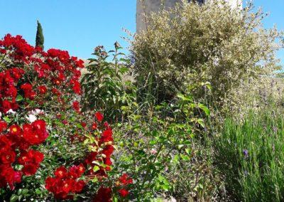 parc fleuri La Tour Levoy